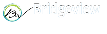 BRIDGEVIEW Maritime Pvt Ltd - JOB ON SHIP